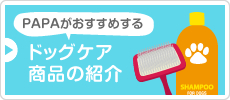 PAPAがおすすめする ドッグケア商品の紹介